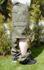 Jungle-Hose, US oliv neu (RV, Beine abnehmbar)