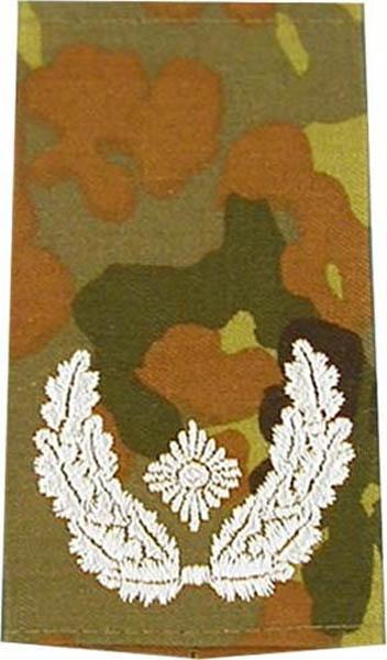 Rangabzeichen, Bw Heer tarn/silber Major