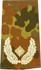 Rangabzeichen, Bw Heer tarn/gold Brigade-General