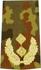 Rangabzeichen, Bw Heer tarn/gold General-Major