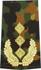 Rangabzeichen, Bw Heer tarn/gold General-Leutnant
