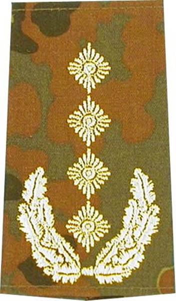 Rangabzeichen, Bw Heer tarn/gold General