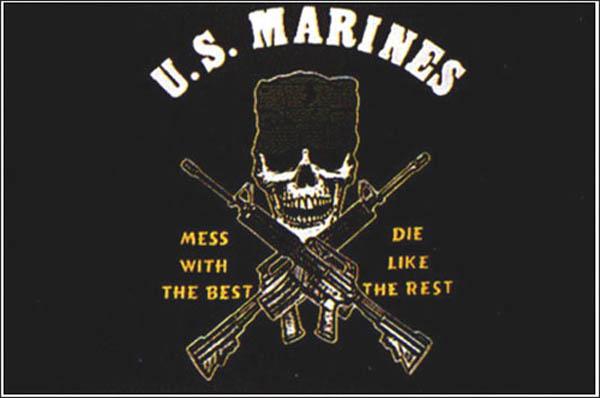 Flagge, U.S. Marines neu