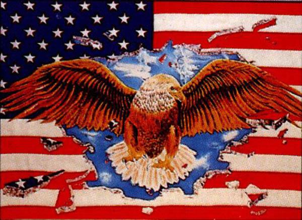 Flagge, U.S.A. mit Adler neu