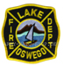 US Abzeichen Firefighter - Lake Oswego