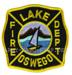 US Abzeichen Firefighter - Lake Oswego