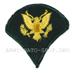 U.S Army Abzeichen