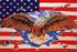 USA + ADLER
