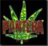 PANTERA
